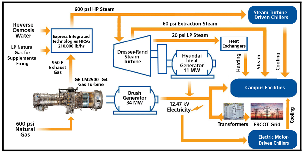 CHP Flow Diagram