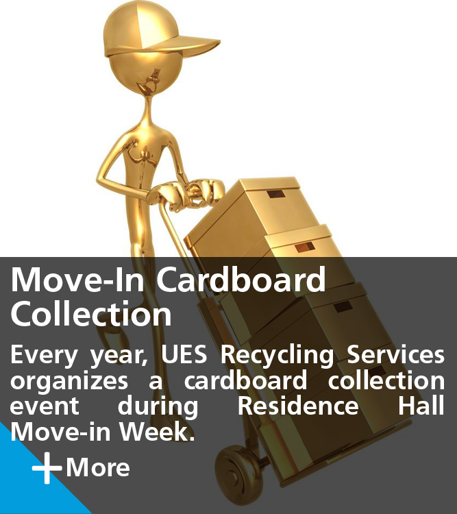 Move-in Cardboard Collection