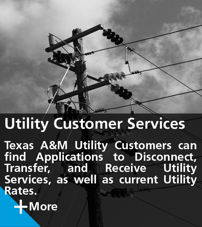 Utility Customer Services