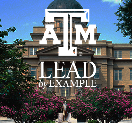 Lead by Example (icon)