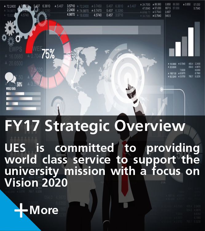 FY17 Strategic Overview