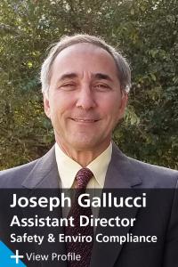 Joe Gallucci